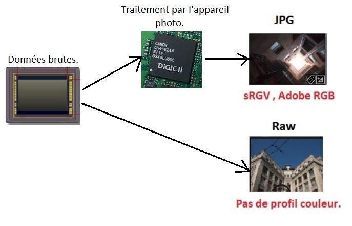 raw_jpg